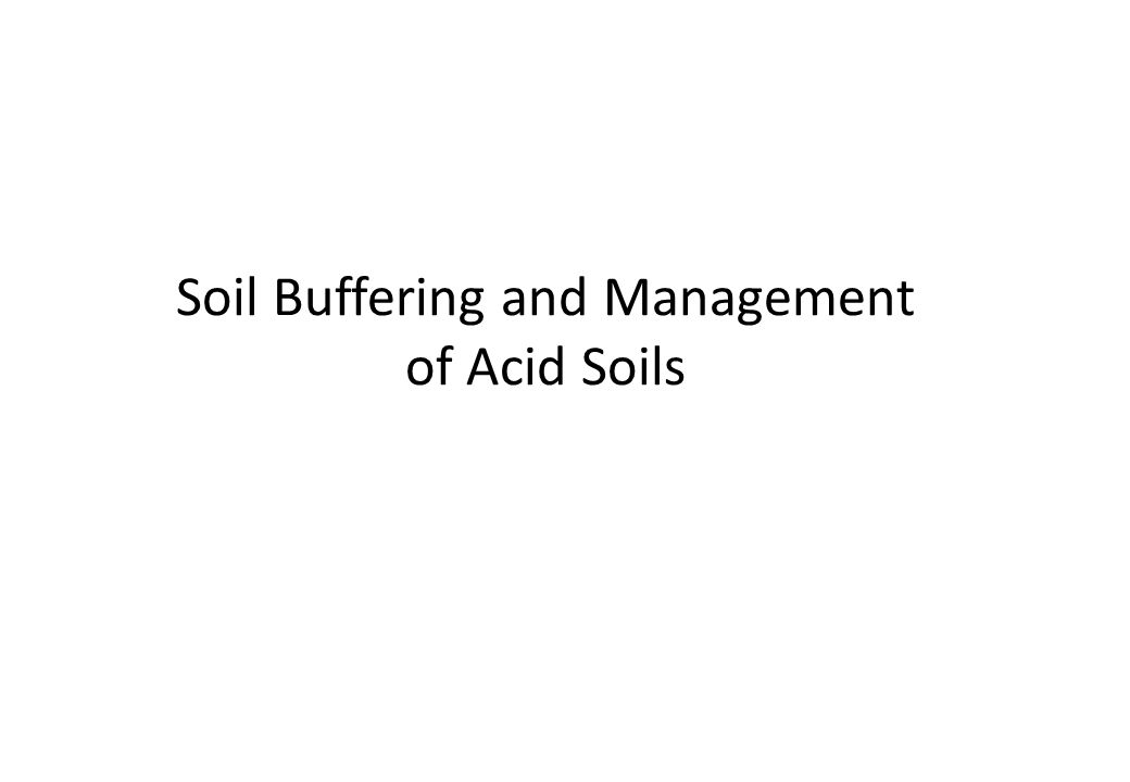 Soil Buffering and Management of Acid Soils