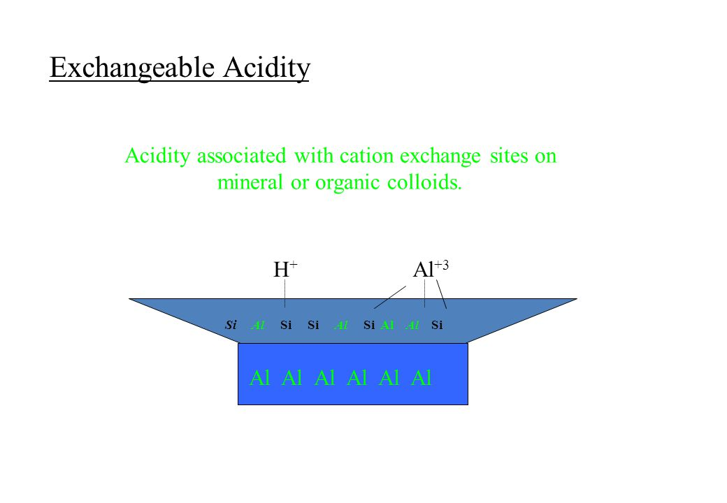 Exchangeable Acidity Acidity associated with cation exchange sites on mineral or organic colloids. H+