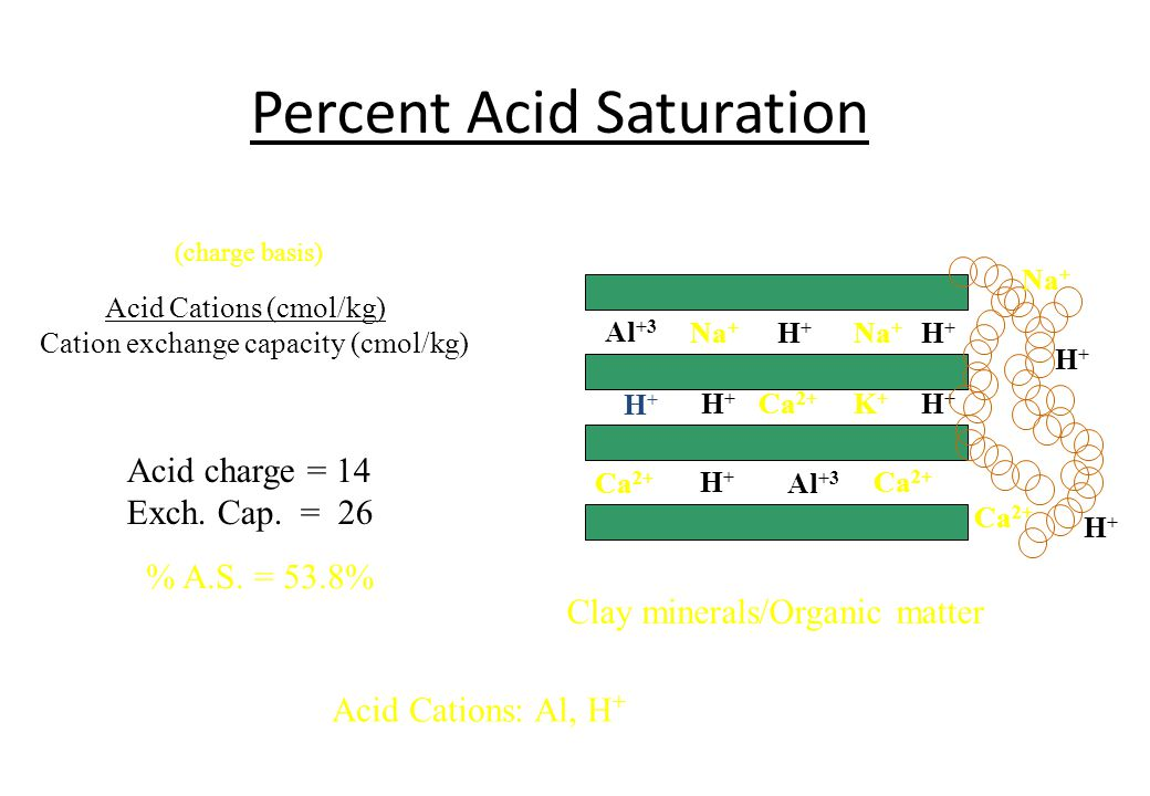 Percent Acid Saturation