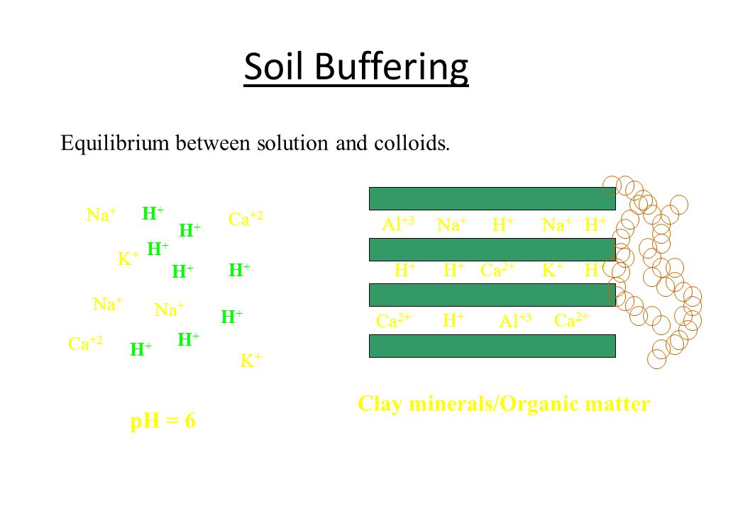 Soil Buffering Equilibrium between solution and colloids.