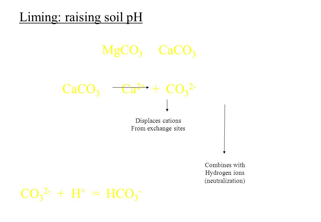 Liming: raising soil pH