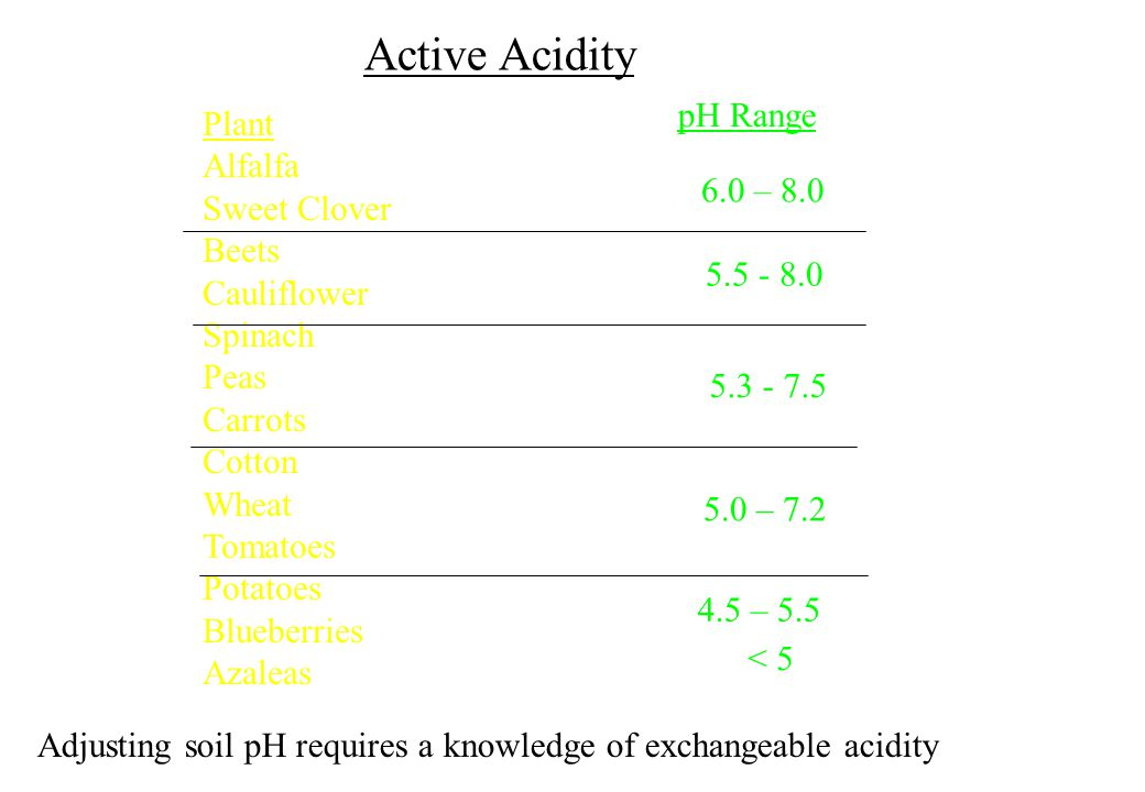 Active Acidity pH Range Plant Alfalfa Sweet Clover Beets 6.0 – 8.0