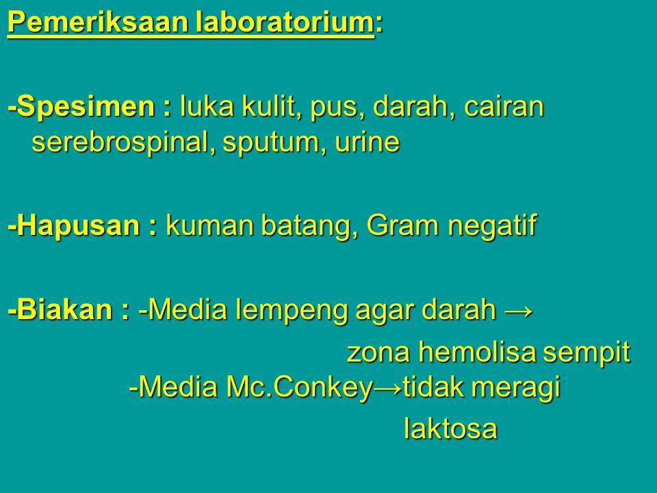 Pemeriksaan laboratorium: