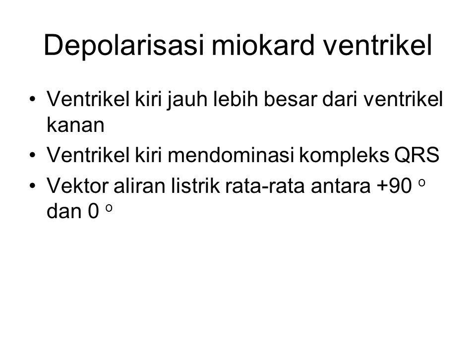 Depolarisasi miokard ventrikel