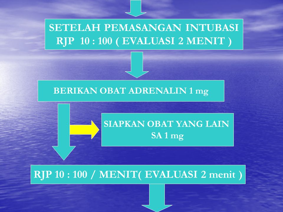 SETELAH PEMASANGAN INTUBASI RJP 10 : 100 ( EVALUASI 2 MENIT )