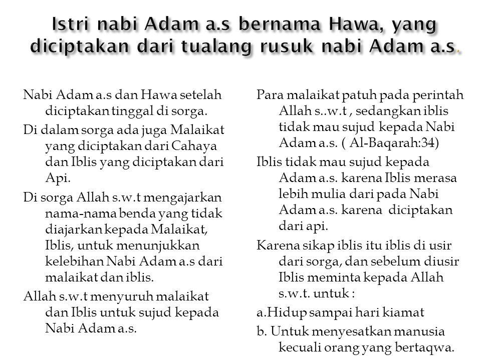 Istri nabi Adam a.s bernama Hawa, yang diciptakan dari tualang rusuk nabi Adam a.s.