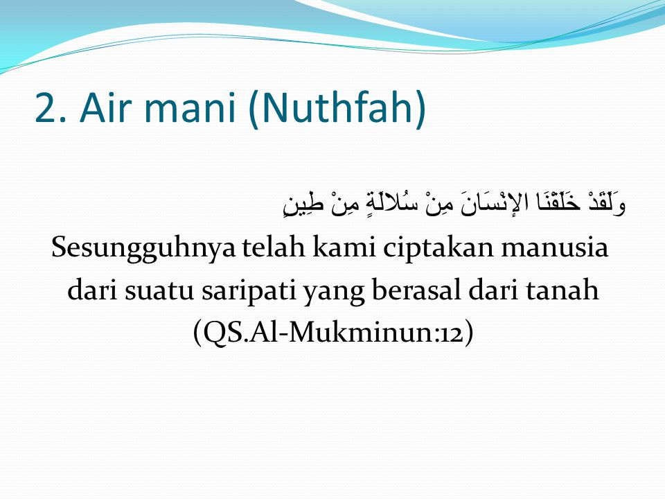 2. Air mani (Nuthfah)