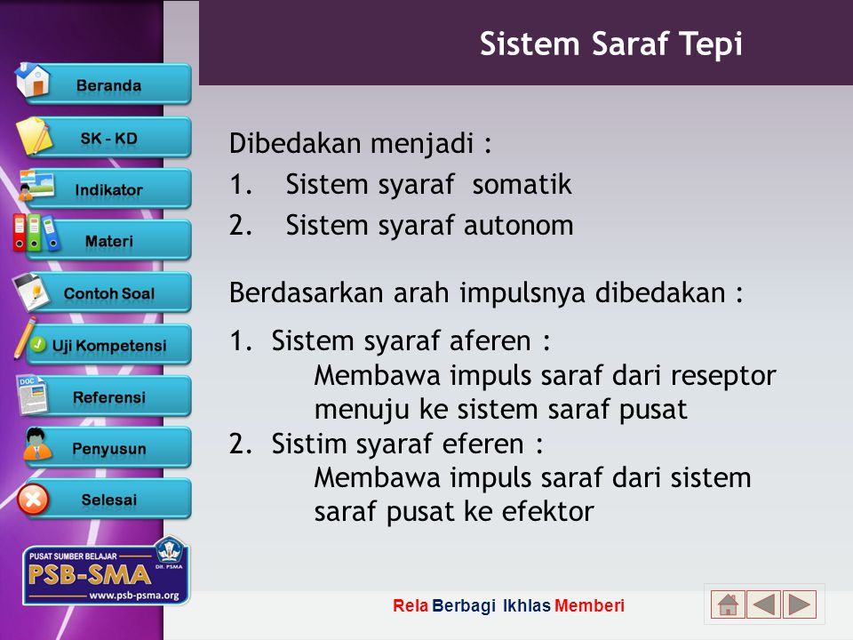 Sistem Saraf Tepi Dibedakan menjadi : Sistem syaraf somatik. Sistem syaraf autonom.