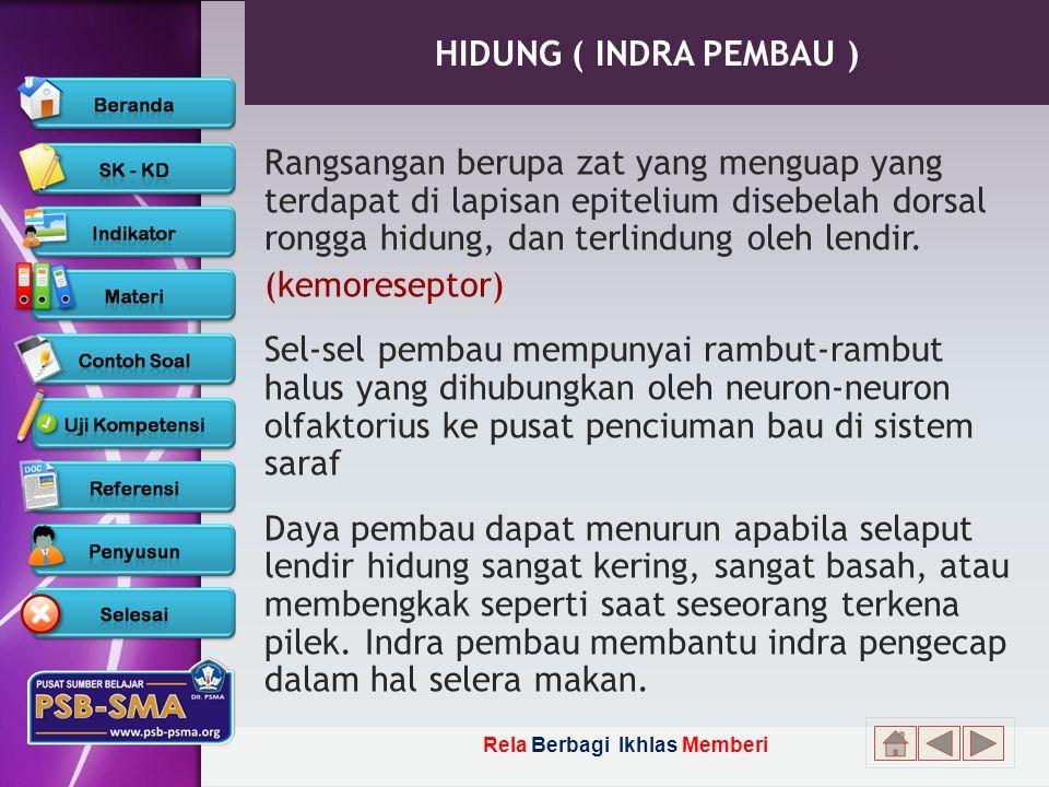 HIDUNG ( INDRA PEMBAU )