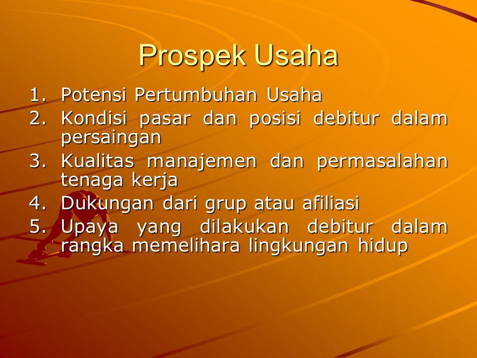 Prospek Usaha Potensi Pertumbuhan Usaha