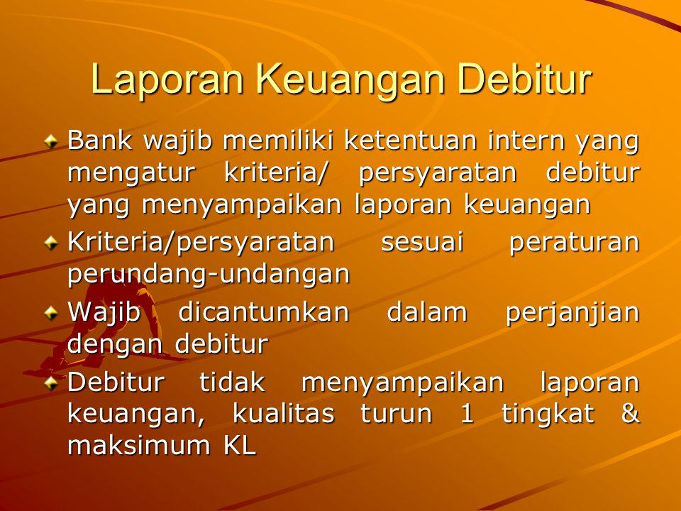 Laporan Keuangan Debitur
