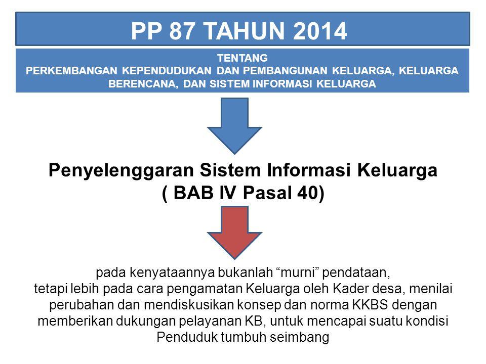 Penyelenggaran Sistem Informasi Keluarga