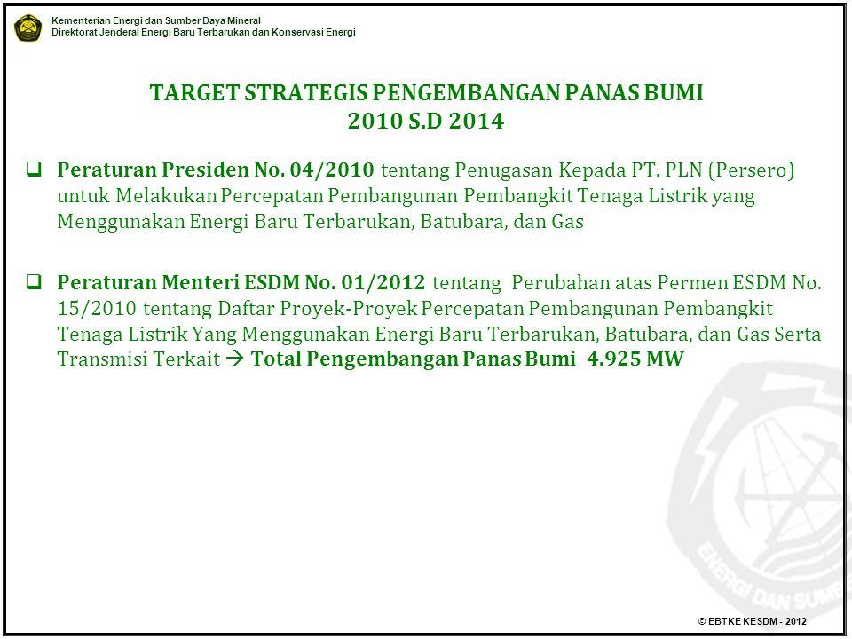 TARGET STRATEGIS PENGEMBANGAN PANAS BUMI 2010 S.D 2014