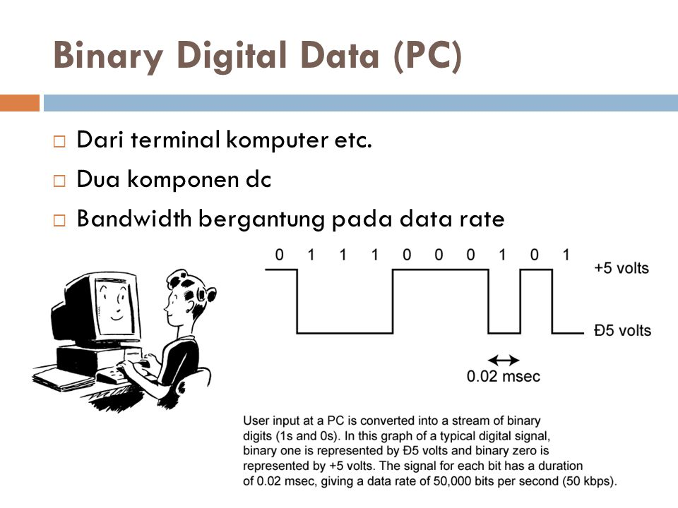 Binary Digital Data (PC)