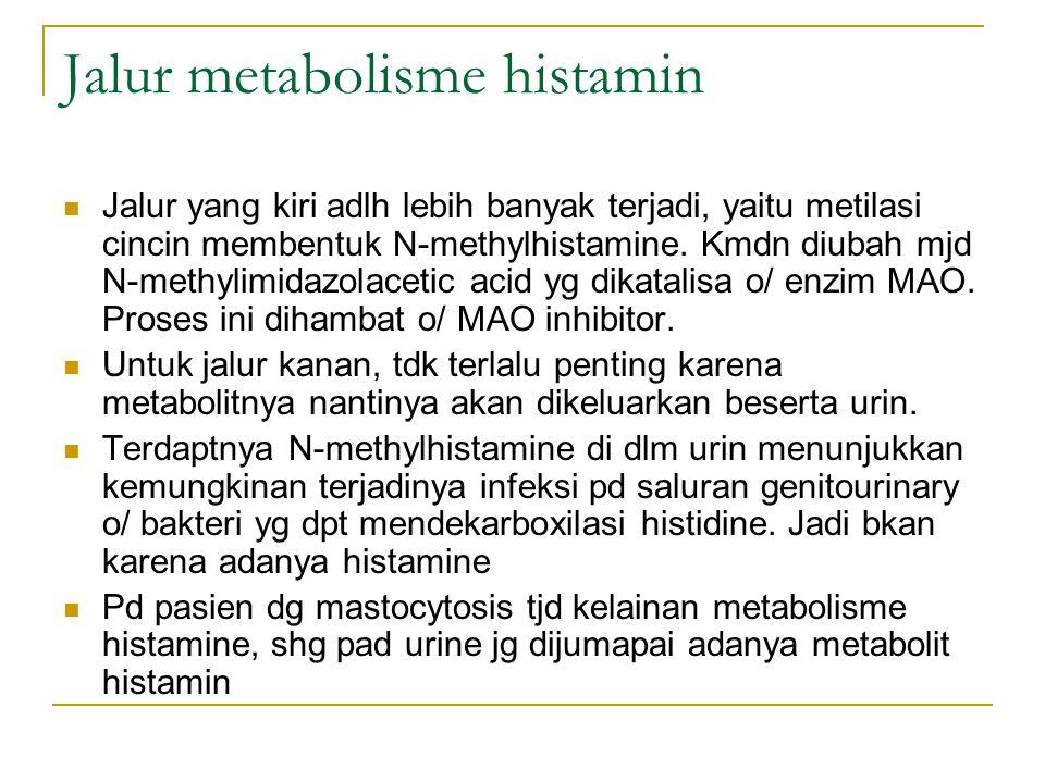 Jalur metabolisme histamin