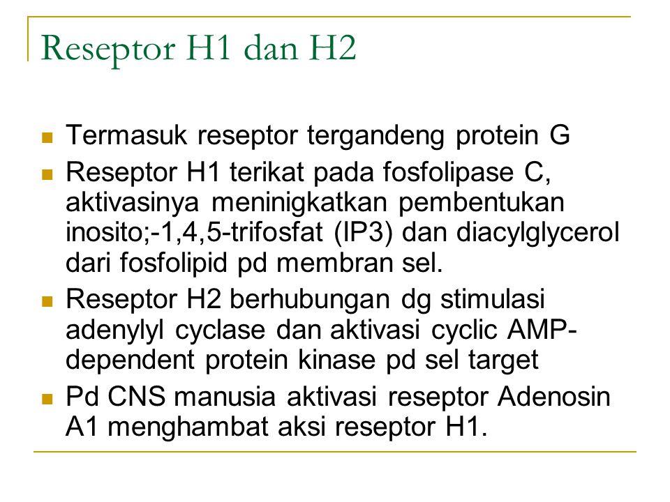 Reseptor H1 dan H2 Termasuk reseptor tergandeng protein G