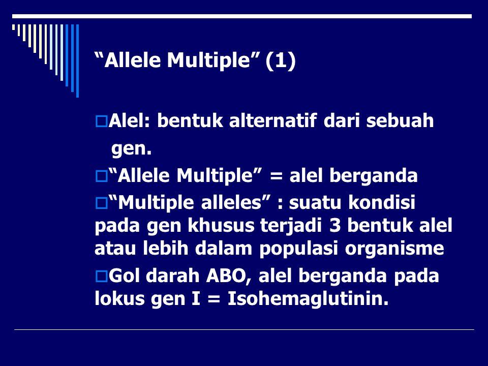 Allele Multiple (1) Alel: bentuk alternatif dari sebuah gen.