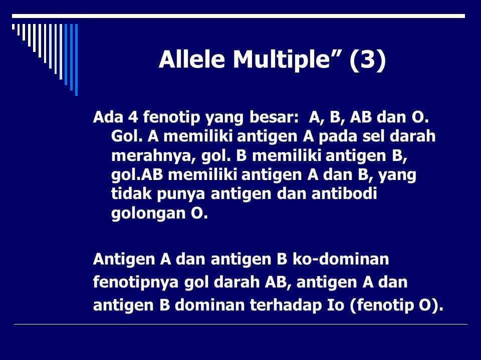 Allele Multiple (3)