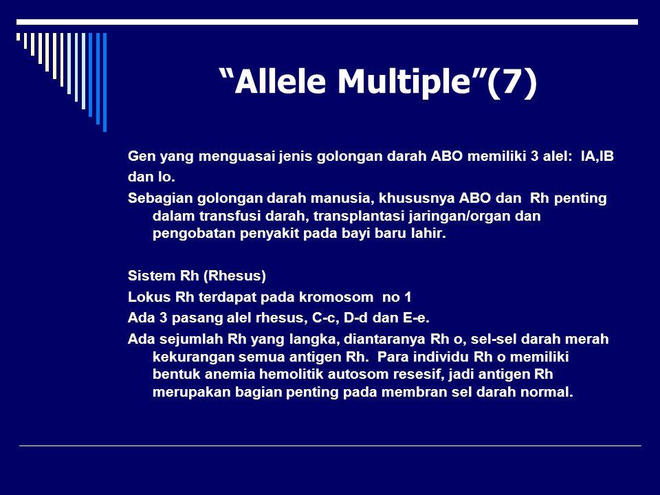 Allele Multiple (7) Gen yang menguasai jenis golongan darah ABO memiliki 3 alel: IA,IB. dan Io.