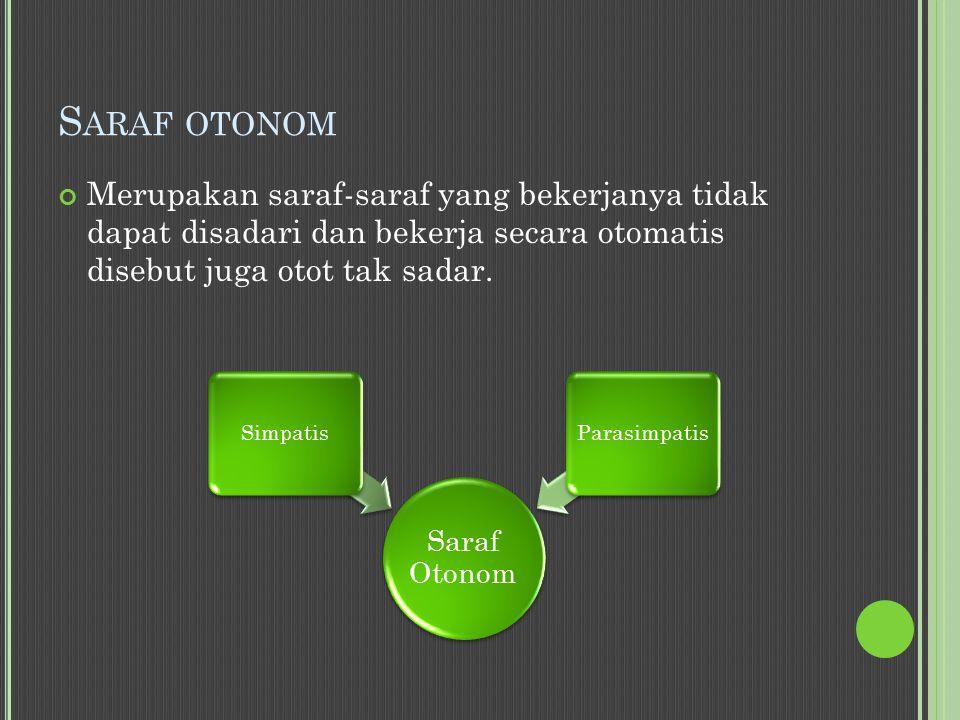 Saraf otonom Merupakan saraf-saraf yang bekerjanya tidak dapat disadari dan bekerja secara otomatis disebut juga otot tak sadar.