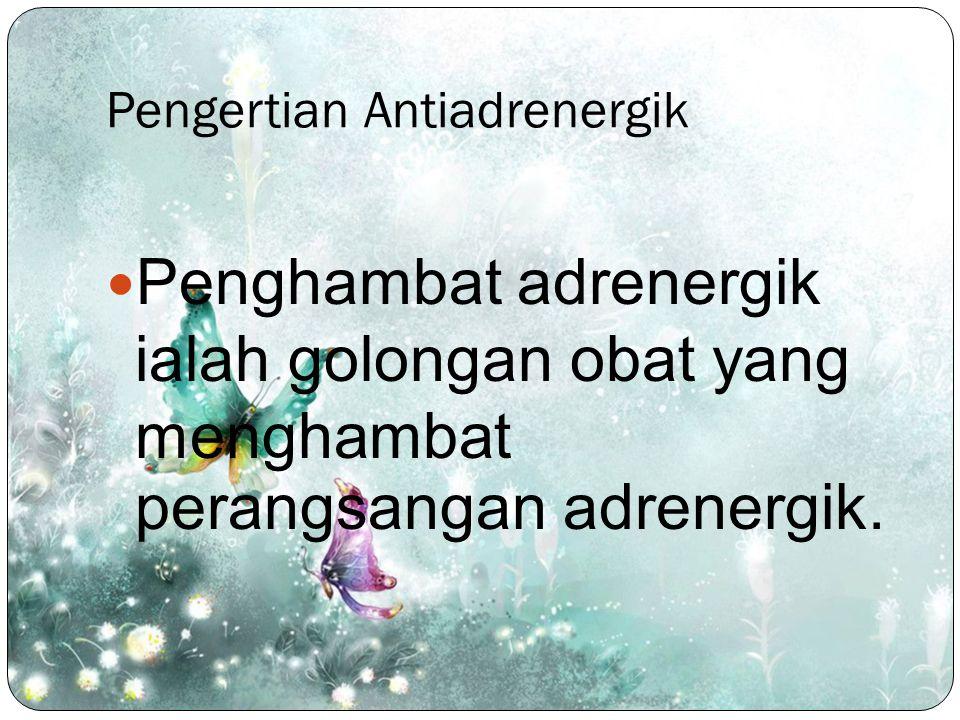 Pengertian Antiadrenergik