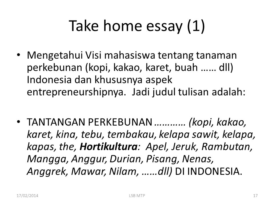 Take home essay (1)