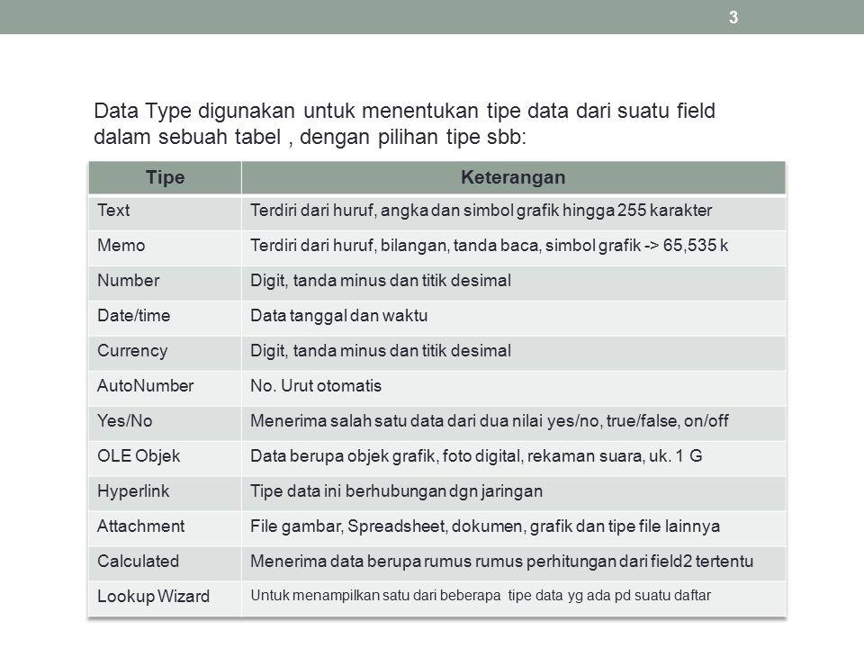 Data Type digunakan untuk menentukan tipe data dari suatu field dalam sebuah tabel , dengan pilihan tipe sbb: