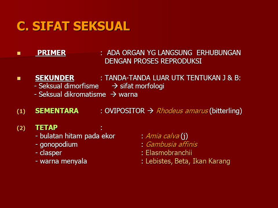 C. SIFAT SEKSUAL PRIMER : ADA ORGAN YG LANGSUNG ERHUBUNGAN