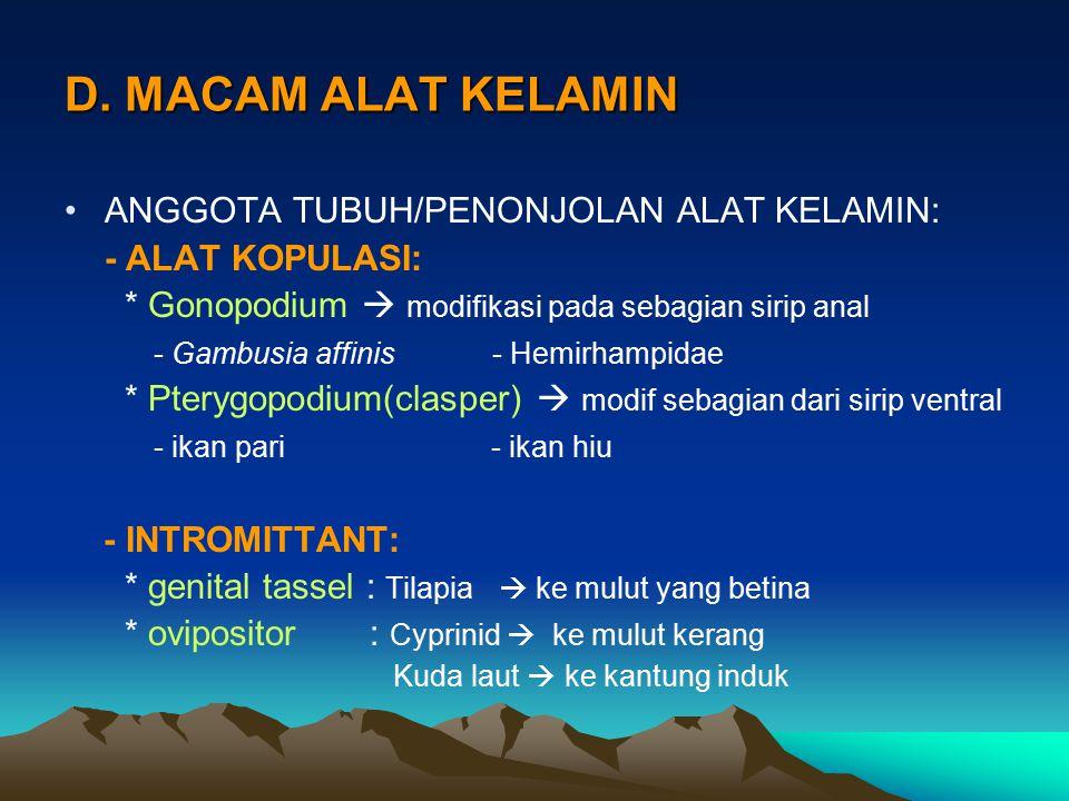 D. MACAM ALAT KELAMIN ANGGOTA TUBUH/PENONJOLAN ALAT KELAMIN: