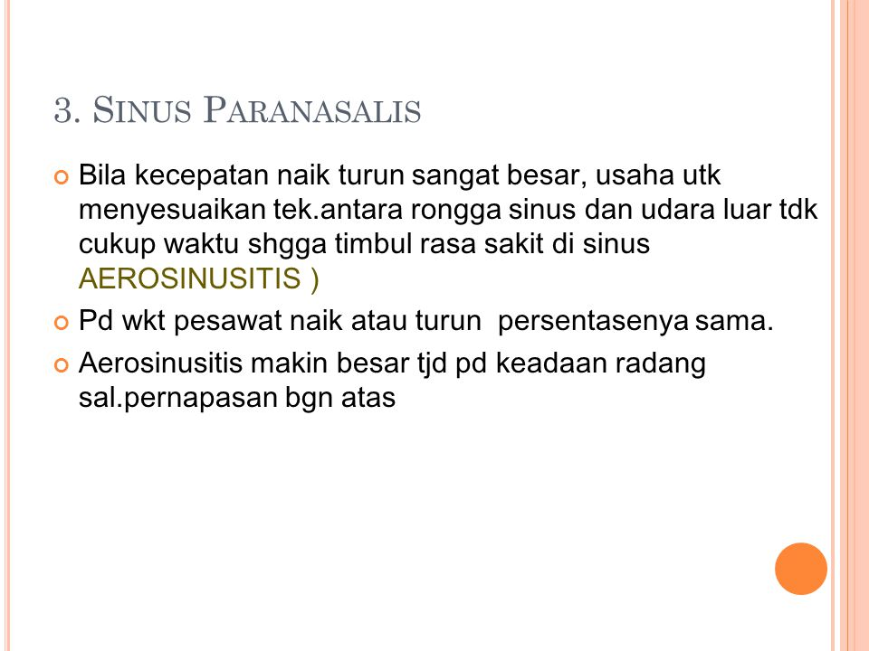 3. Sinus Paranasalis