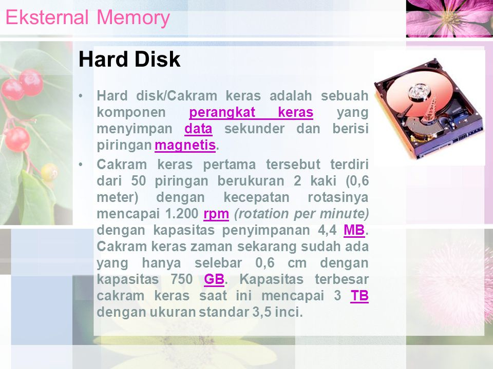 Hard Disk Eksternal Memory