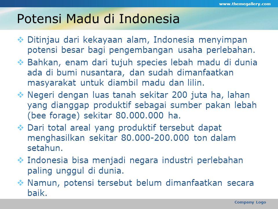 Potensi Madu di Indonesia