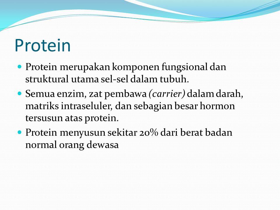 Protein Protein merupakan komponen fungsional dan struktural utama sel-sel dalam tubuh.