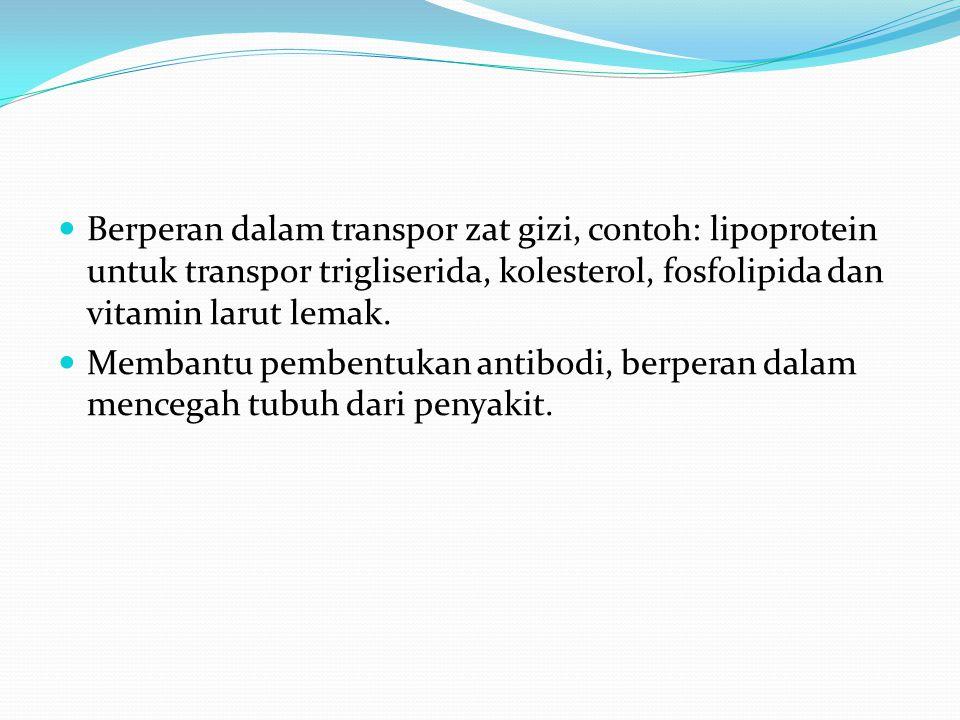Berperan dalam transpor zat gizi, contoh: lipoprotein untuk transpor trigliserida, kolesterol, fosfolipida dan vitamin larut lemak.