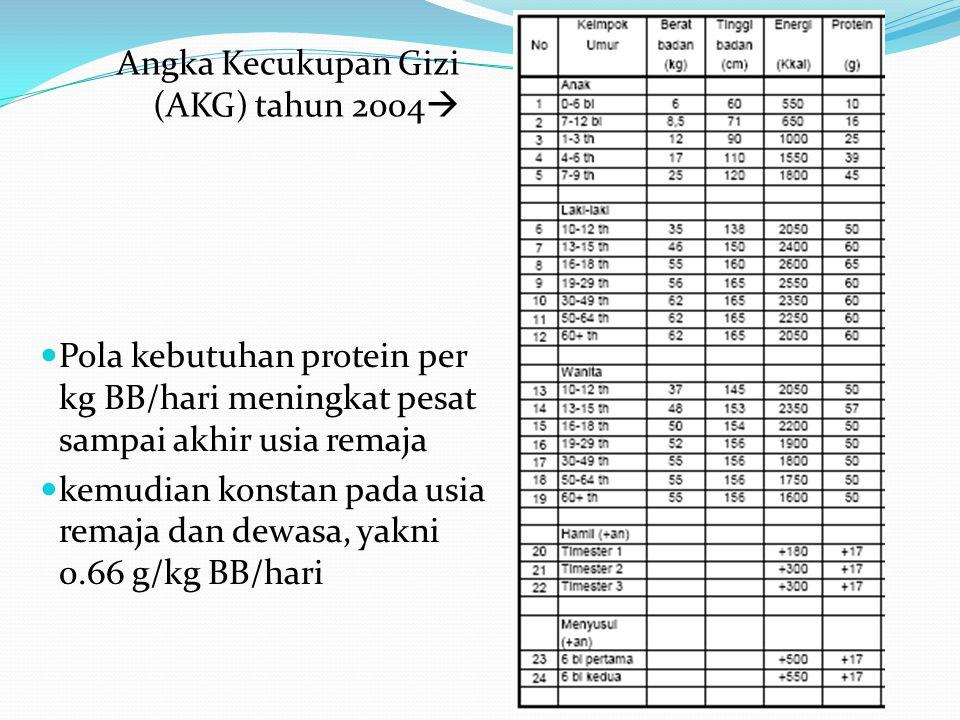 Angka Kecukupan Gizi (AKG) tahun 2004