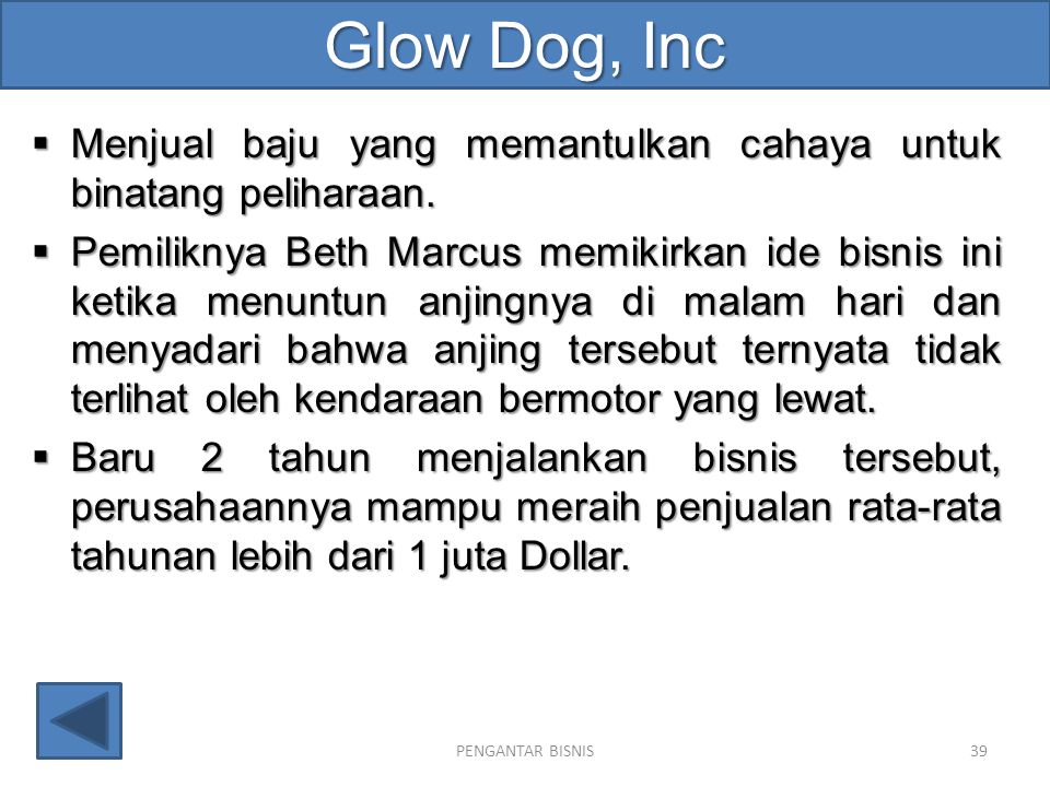 Glow Dog, Inc Menjual baju yang memantulkan cahaya untuk binatang peliharaan.