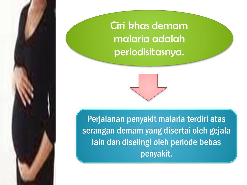 Ciri khas demam malaria adalah periodisitasnya.