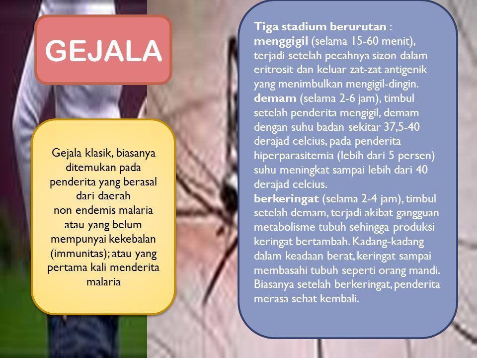 GEJALA Tiga stadium berurutan :
