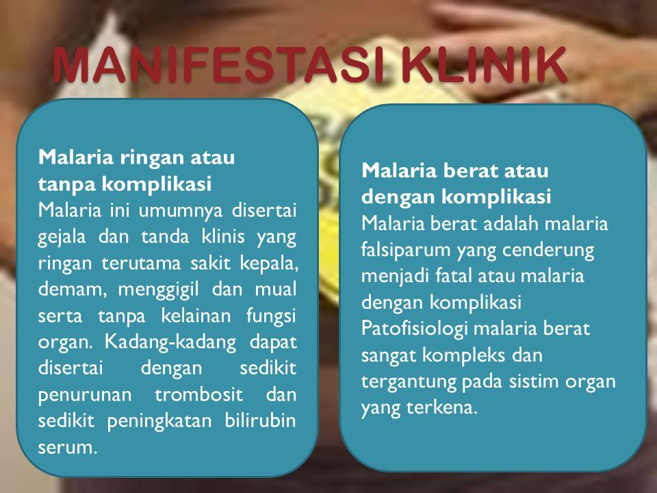 MANIFESTASI KLINIK Malaria ringan atau tanpa komplikasi