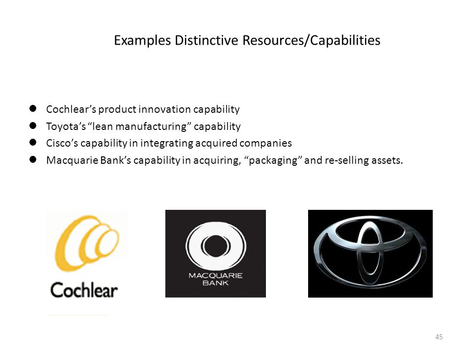 Examples Distinctive Resources/Capabilities