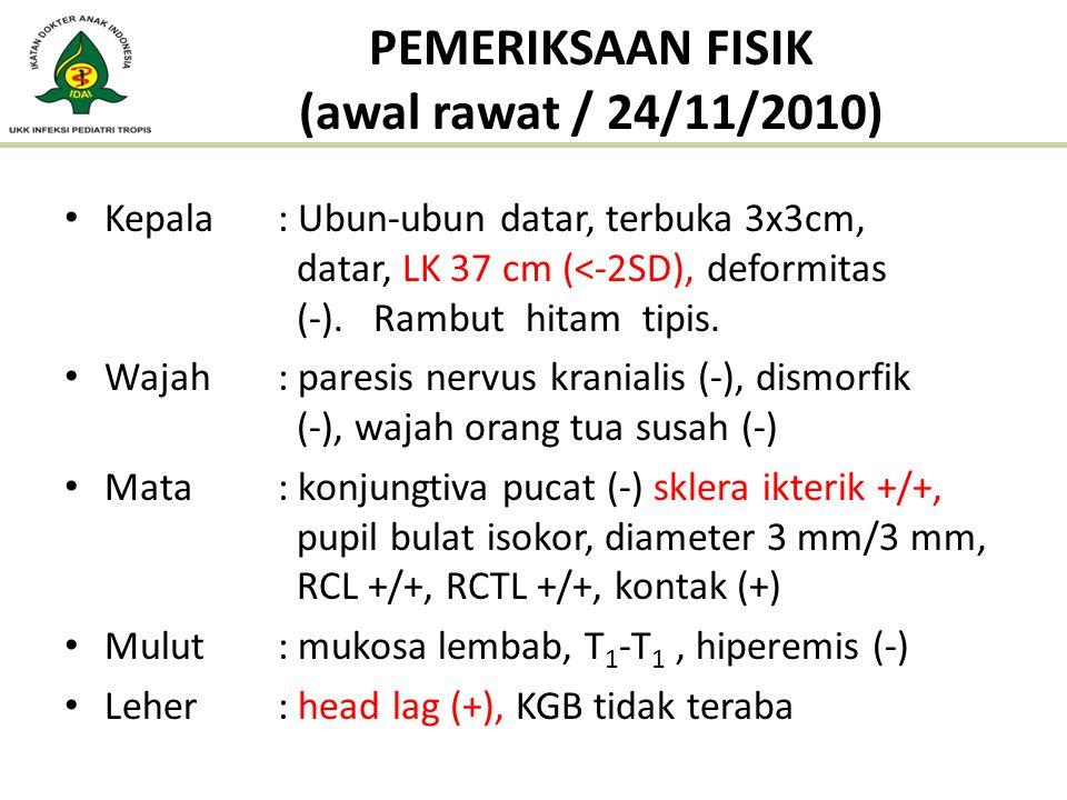 PEMERIKSAAN FISIK (awal rawat / 24/11/2010)