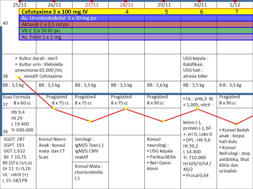 Cefotaxime 3 x 100 mg IV 4 5 6 7 25/11 26/11 27/11 28/11 29/11 30/11