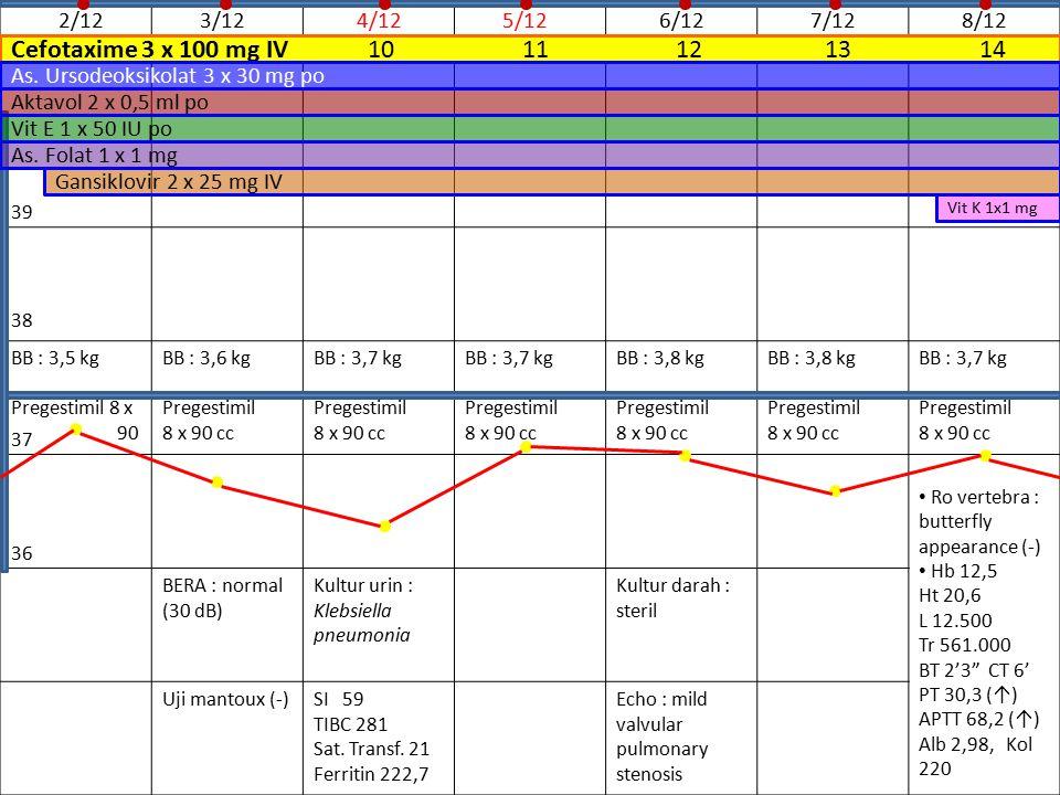 Cefotaxime 3 x 100 mg IV 10 11 12 13 14 2/12 3/12 4/12 5/12 6/12 7/12