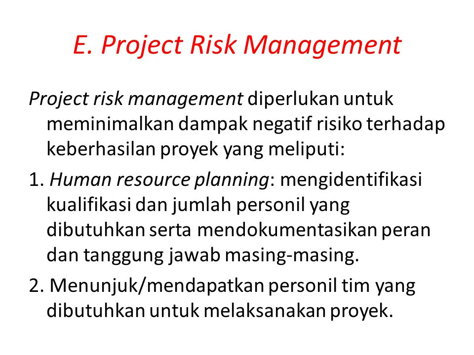 E. Project Risk Management
