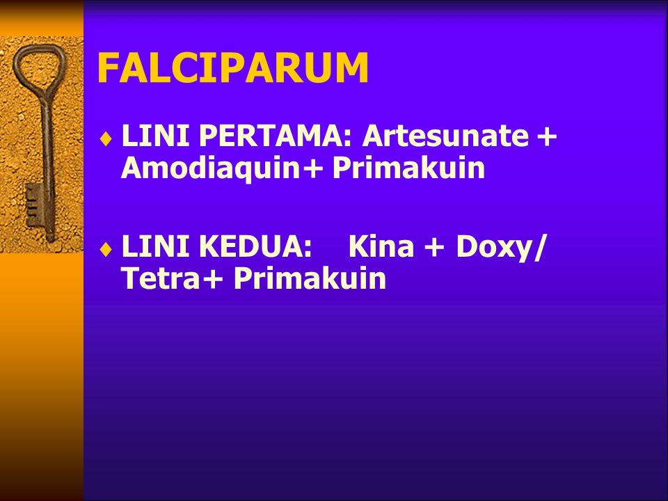 FALCIPARUM LINI PERTAMA: Artesunate + Amodiaquin+ Primakuin