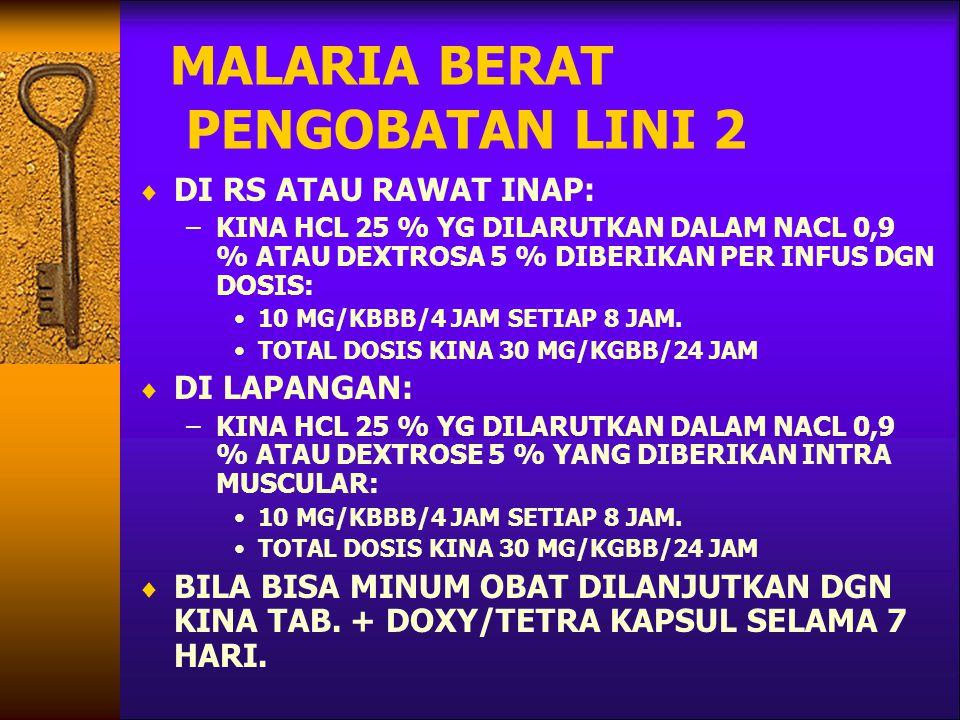 MALARIA BERAT PENGOBATAN LINI 2
