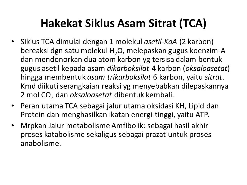 Hakekat Siklus Asam Sitrat (TCA)