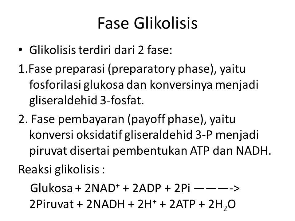 Fase Glikolisis Glikolisis terdiri dari 2 fase: