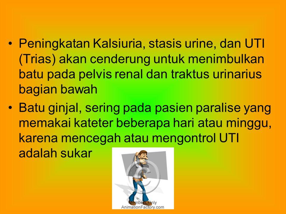 Peningkatan Kalsiuria, stasis urine, dan UTI (Trias) akan cenderung untuk menimbulkan batu pada pelvis renal dan traktus urinarius bagian bawah