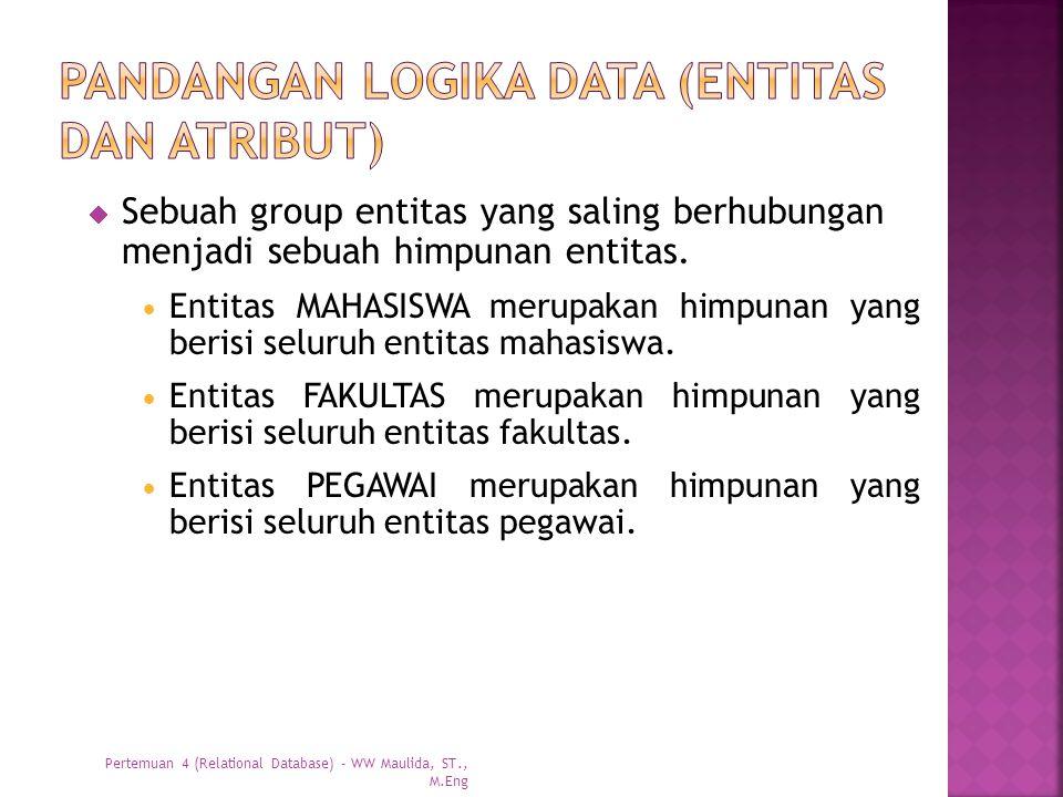 Pandangan logika data (entitas dan atribut)